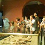Foto Visita guiada al museo arqueológico de Burriana